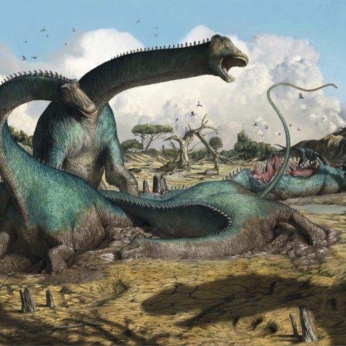 Jäger der Urzeitknochen