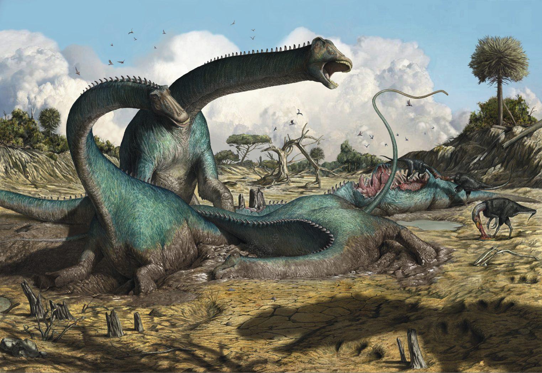 Eine Gruppe von im Schlamm stecken gebliebenen Kaatedocus siberi wird von einem Allosaurus (Schatten, rechts im Vordergrund) attackiert. Bild: Davide Bonadonna/Sauriermuseum Aathal