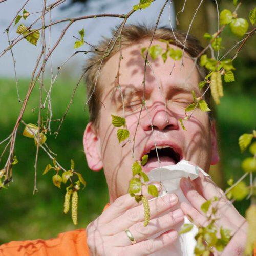 Warmes Klima macht Allergikern zu schaffen