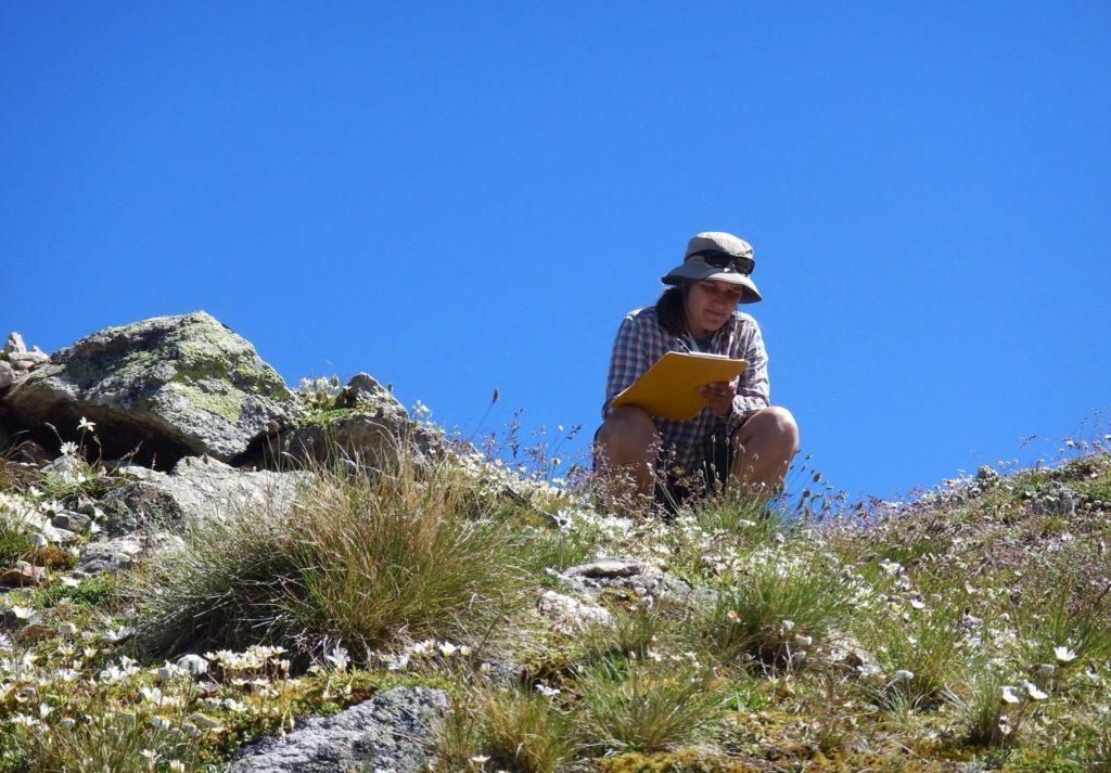 Botanikerin Sonja Wipf notiert in der Hocke auf ihrem Schreibblock –auf einem Felsengrab mit kargem Pflanzenwuchs.