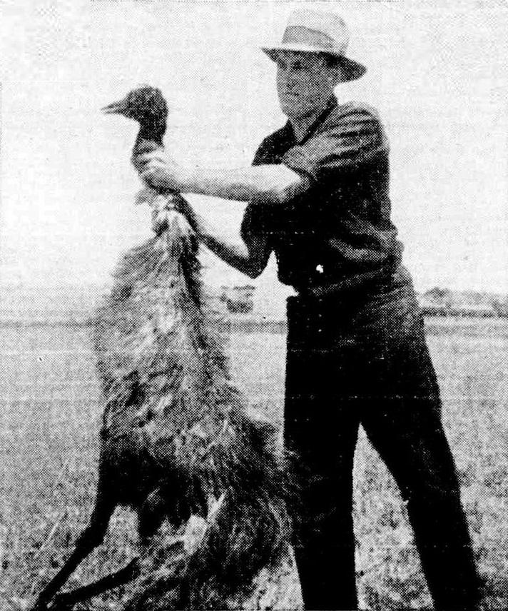 Ein Mann hält einen toten Emu am Hals fest und hält ihn in die Höhe.