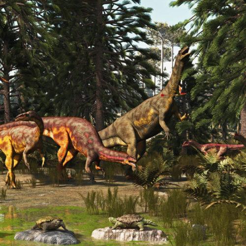 Massenaussterben verhalf Dinos zum Erfolg