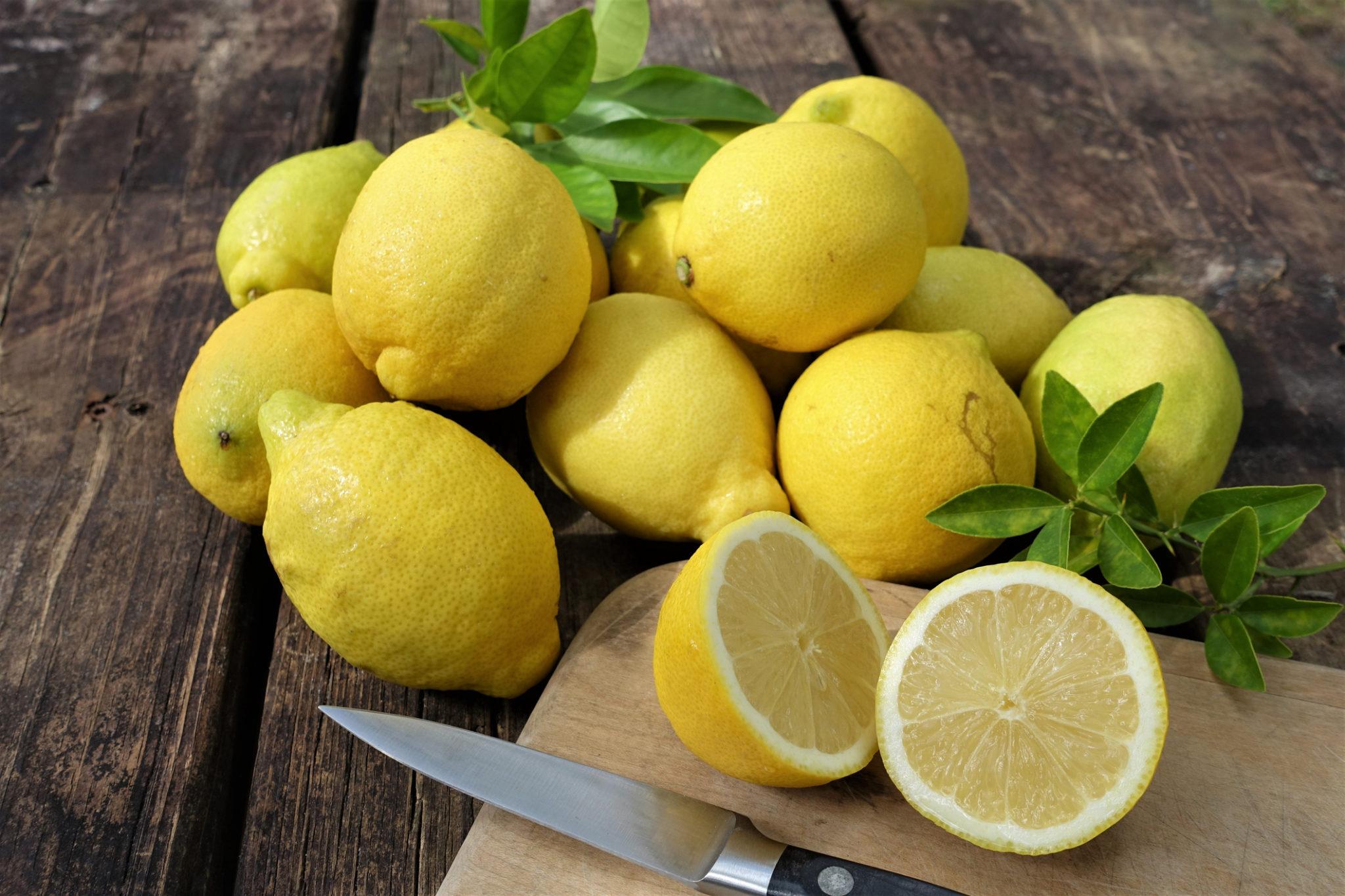 Rund ein Dutzend Zitronen auf einem Küchentisch, eine halbiert auf einem Schneidbrett.