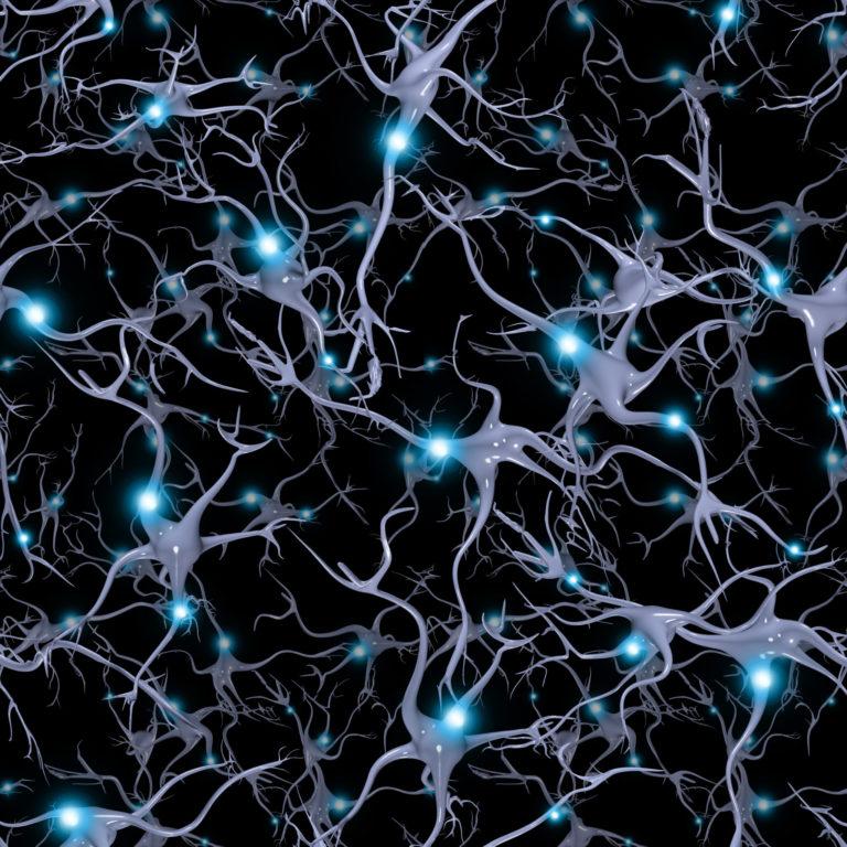 Eine Animation vom Inneren des Gehirns. Die Animation zeigt wie Dendriten Nervenzellen miteinander verbinden.