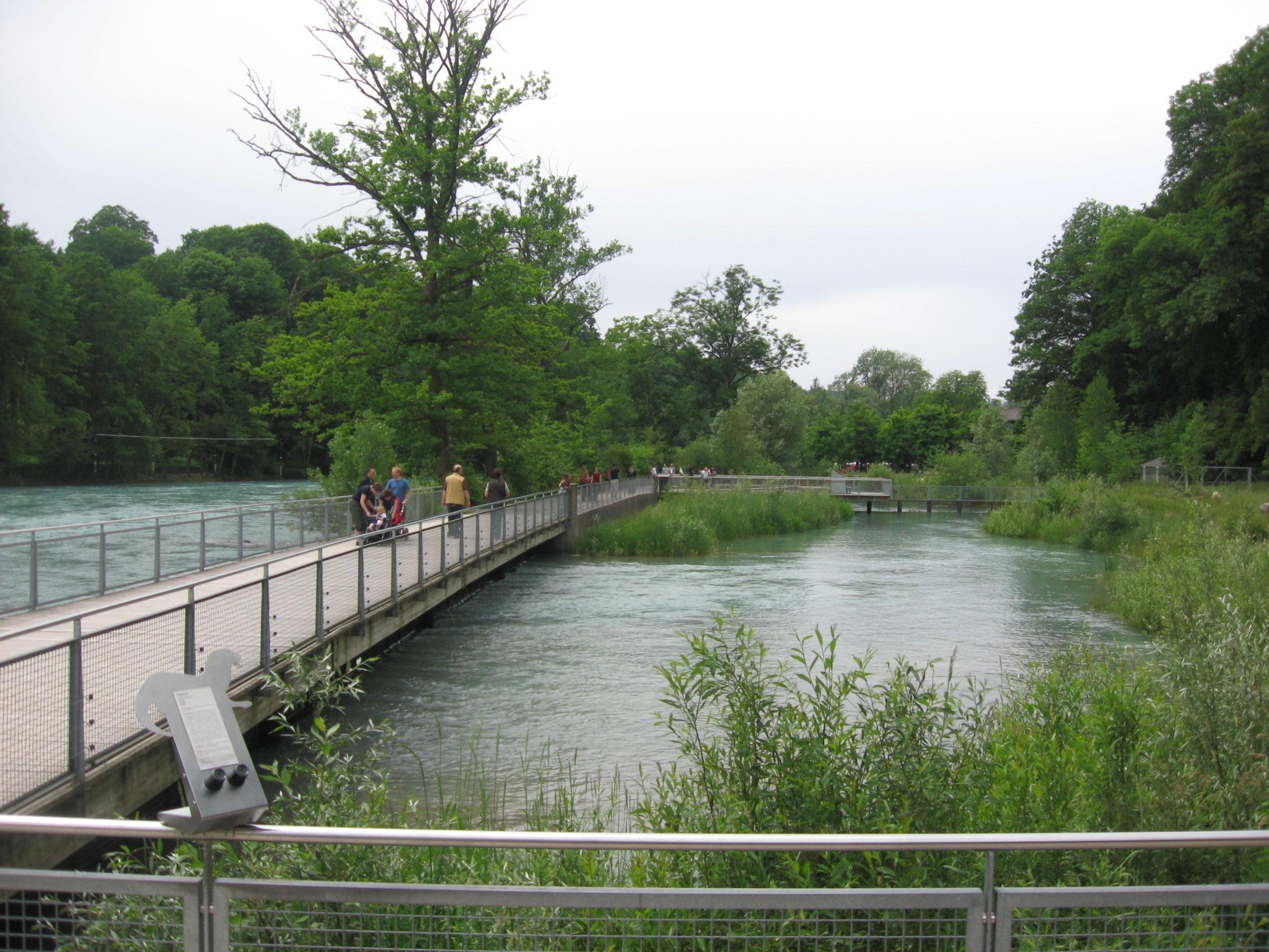Perfektes Erholungsgebiet: Die Aareufer-Anlage im Tierpark Dählhölzli in Bern.