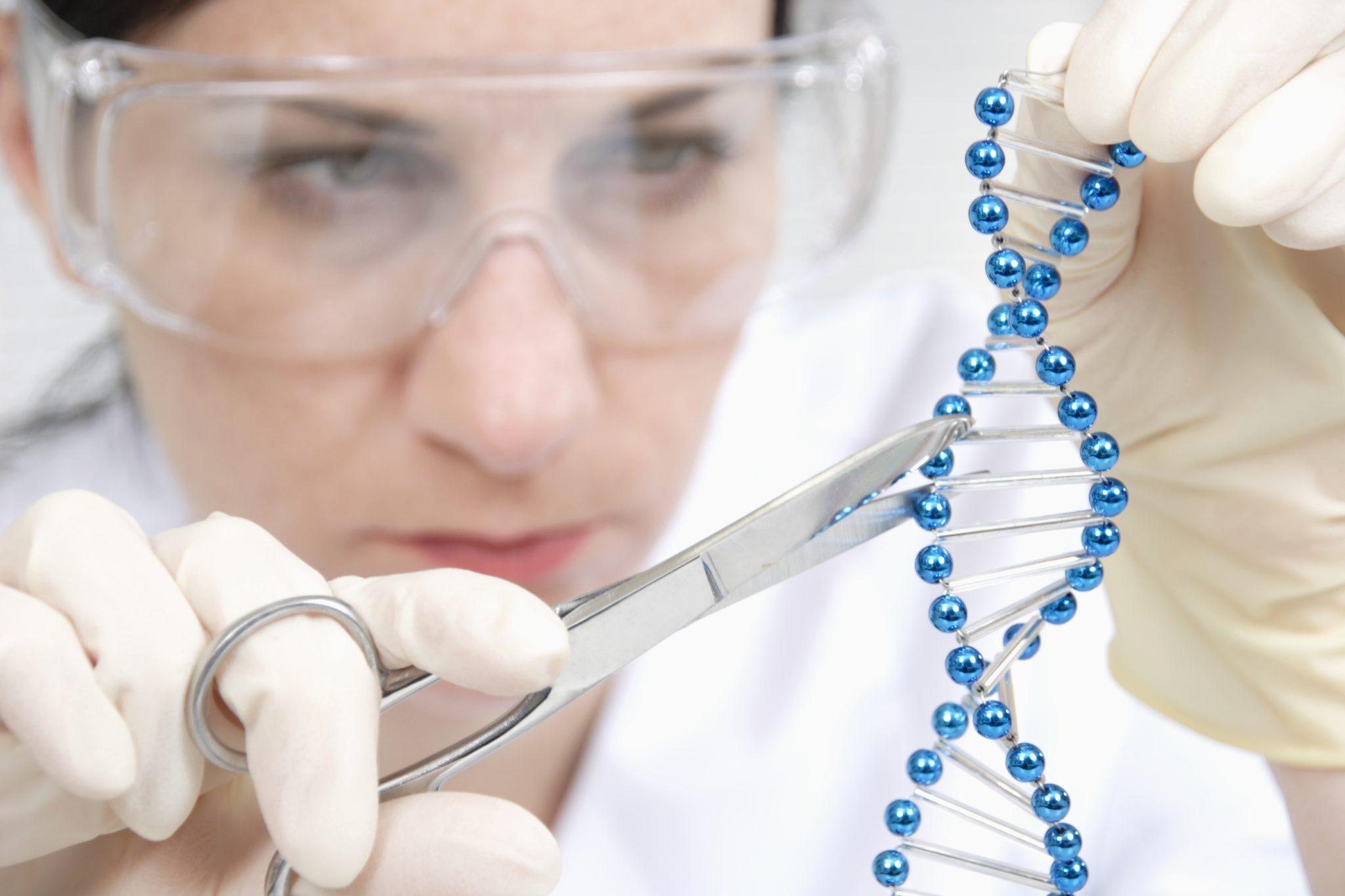 Mit der Genschere Crispr-Cas9 können Forschende das Erbgut gezielt verändern.