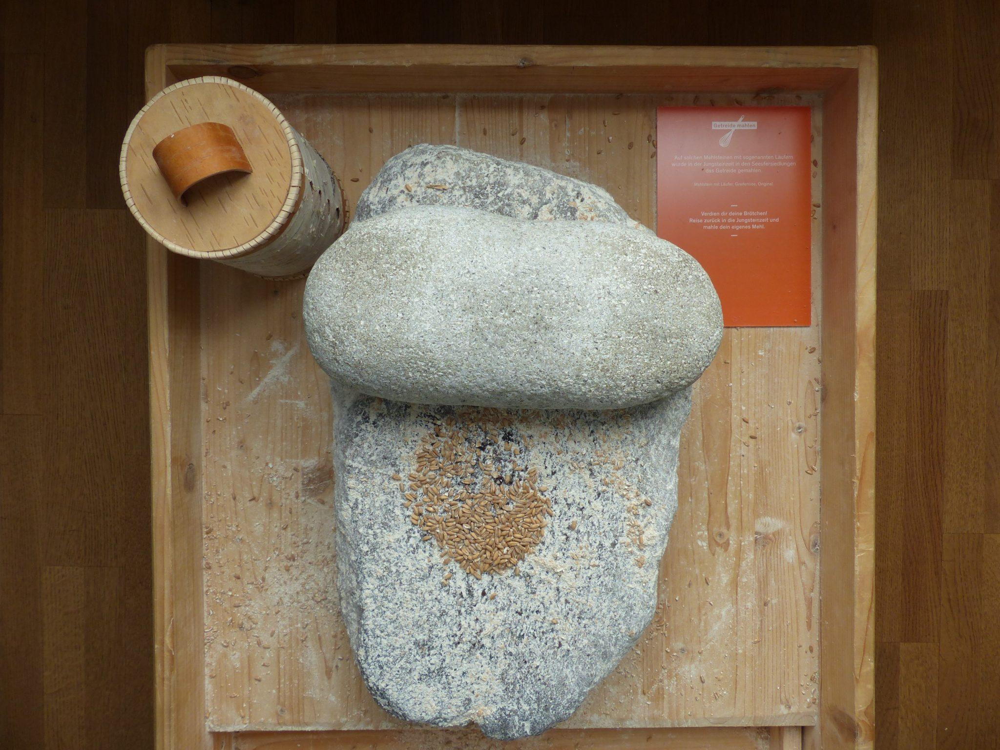 Wie lange es wohl dauert, genug Mehl für ein Fladenbrot zu mahlen? Im Kulturama können Besucher das selbst ausprobieren.