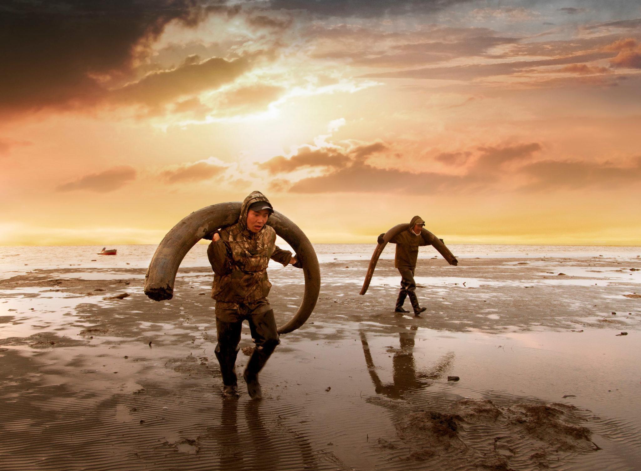 Mammut-Stosszahnjäger.