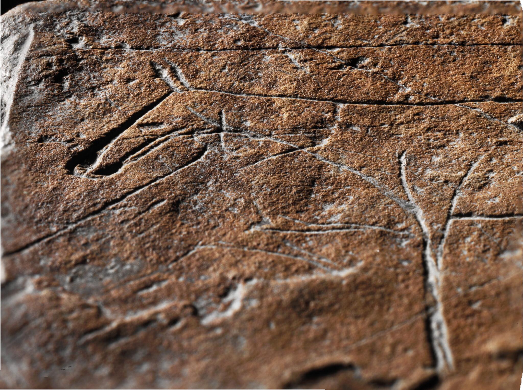 Steinplättchen mit Tiergravierungen, gefunden in Schweizersbild, Kanton Schaffhausen. Foto