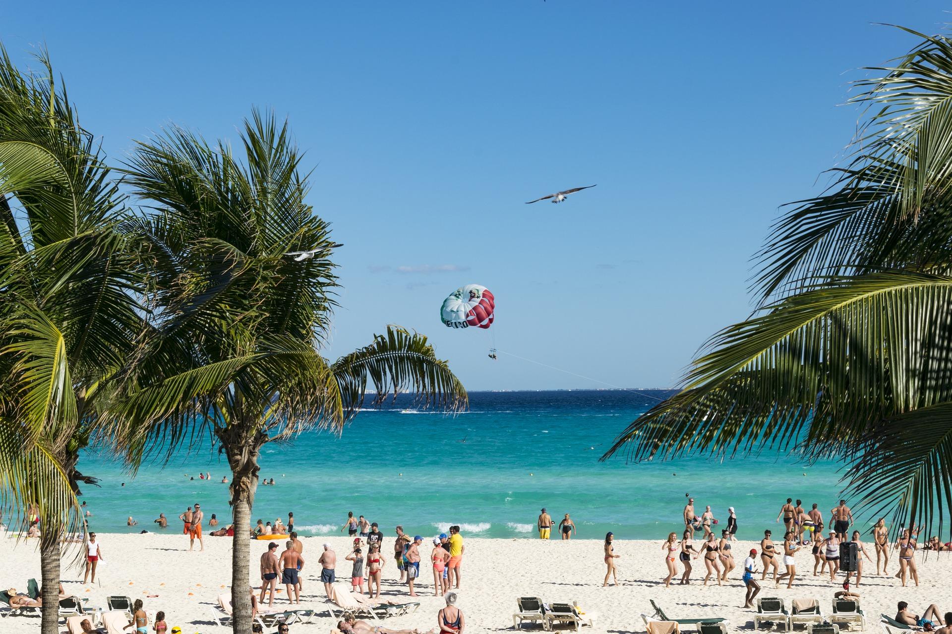 Strand mit vielen Leuten, links und rechts Palmen. In der Mitte ein Windsegler und ein Vogel.