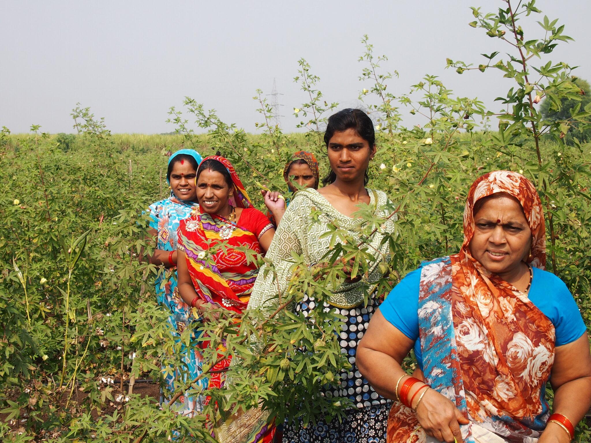 Indische Frauen in bunten Gewändern