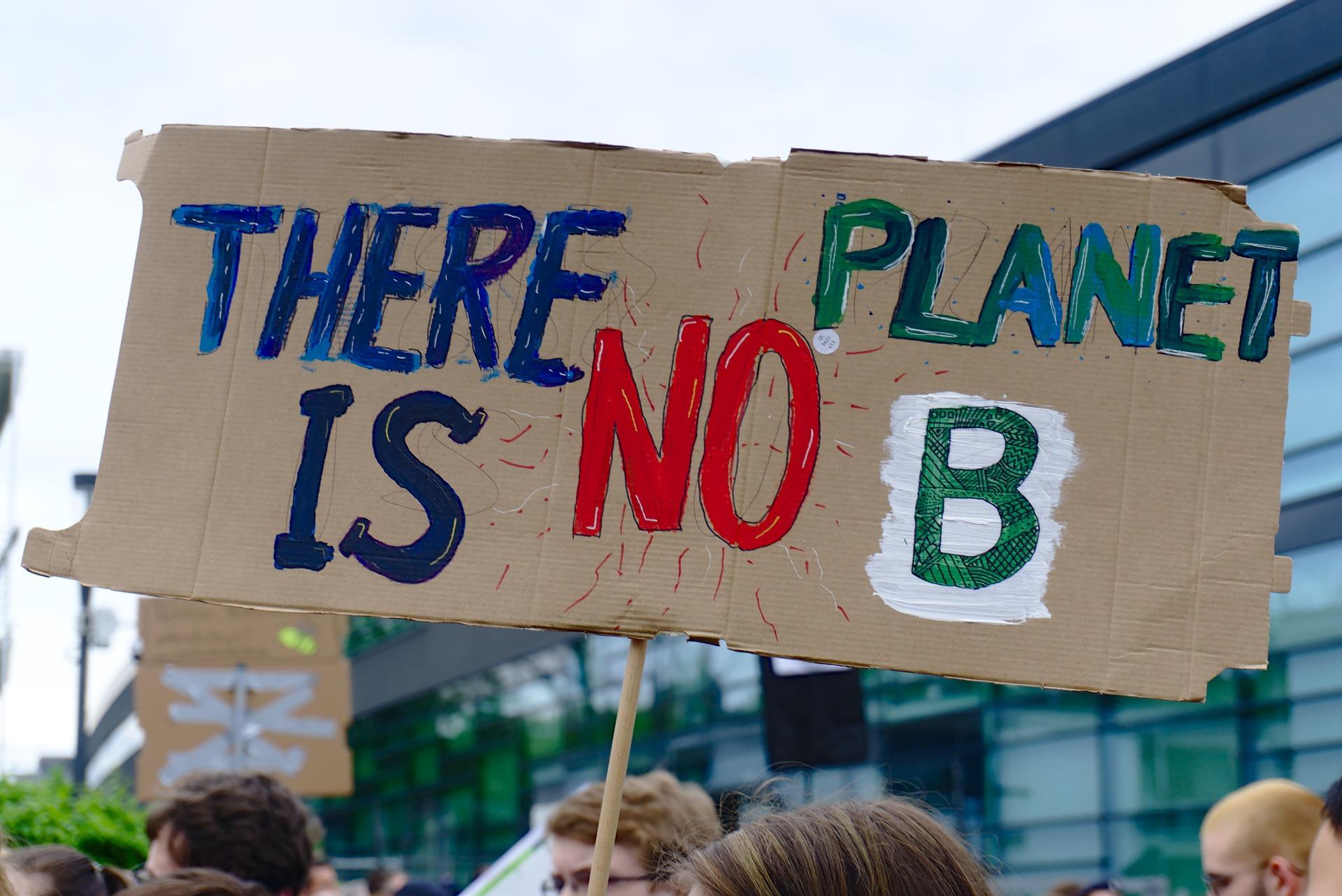"""Schild von einer Demonstration der Klimajugend mit der Aufschrift: """"There is no Planet B"""""""