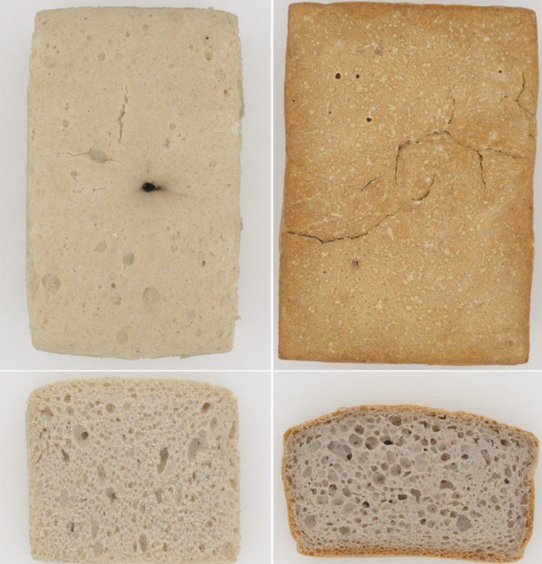 Kruste und Krume eines glutenfreien Buchweizenbrotes gebacken mit Ohmschem Erhitzen (links) und mittels konventionellem Backen (rechts).