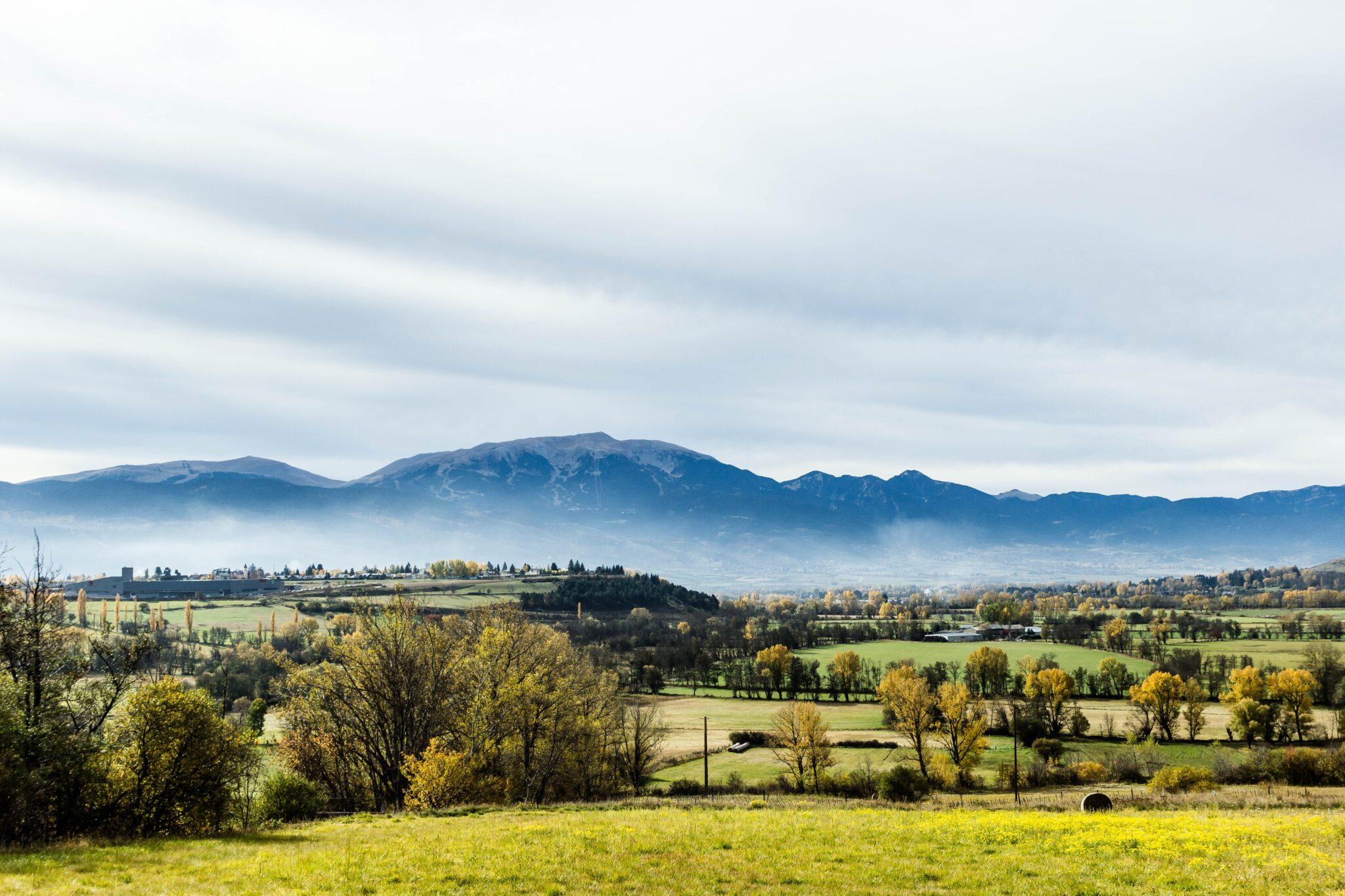 Landschaftsbild mit Feldern und von Bäumen/Büschen bewachsenen Zonen.
