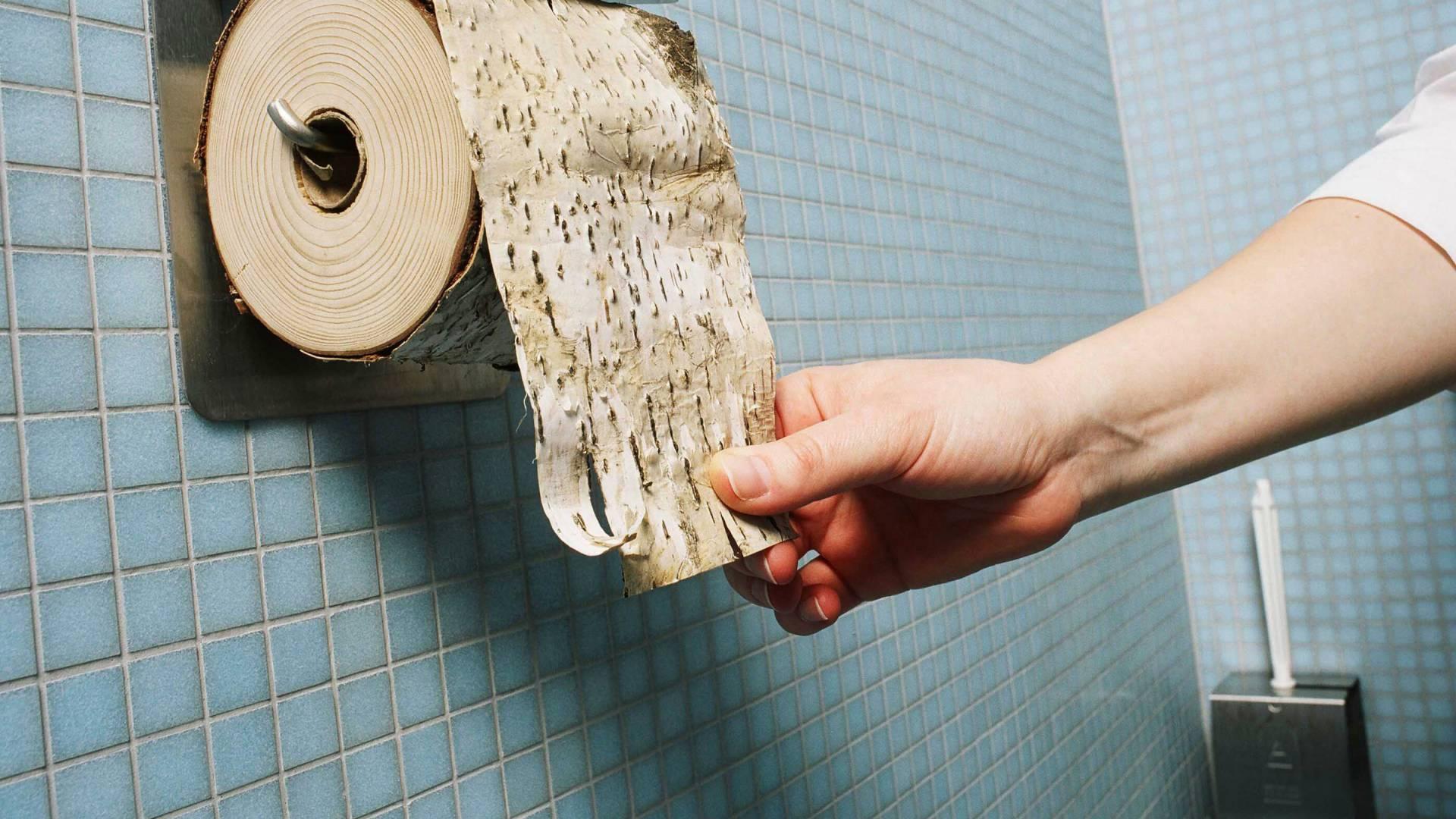 Baumrinde auf einer Toilettenpapierrolle aufgerollt