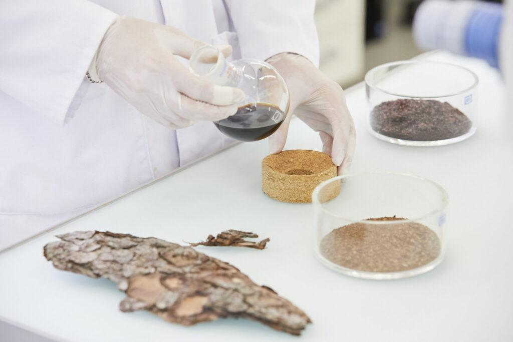 Baumrinde wird im Labor analysiert.