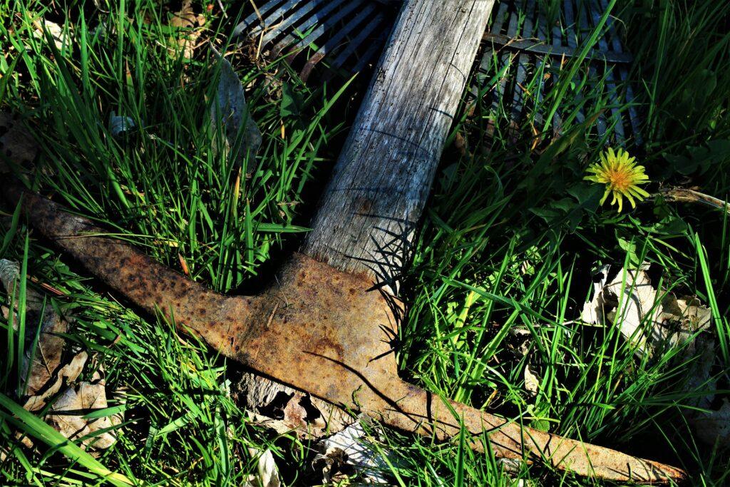Rostige Spitzhacke im Gras