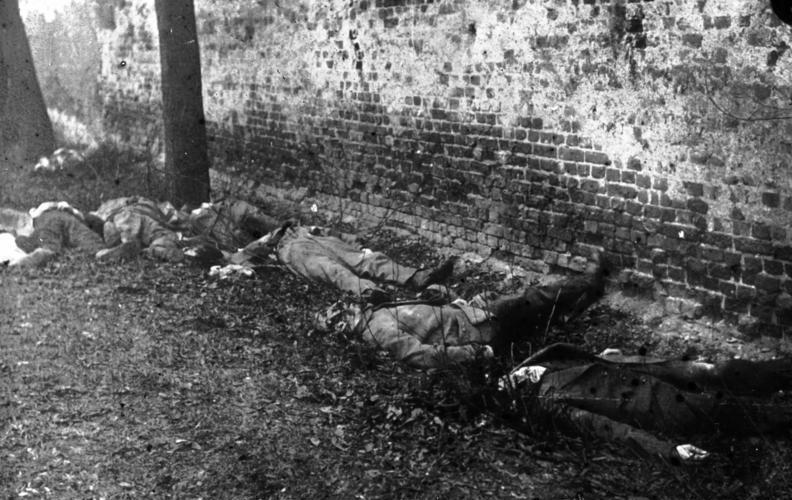 Schwarzweissbild: von Regierungstruppen standrechtlich erschossene revolutionäre Soldaten.