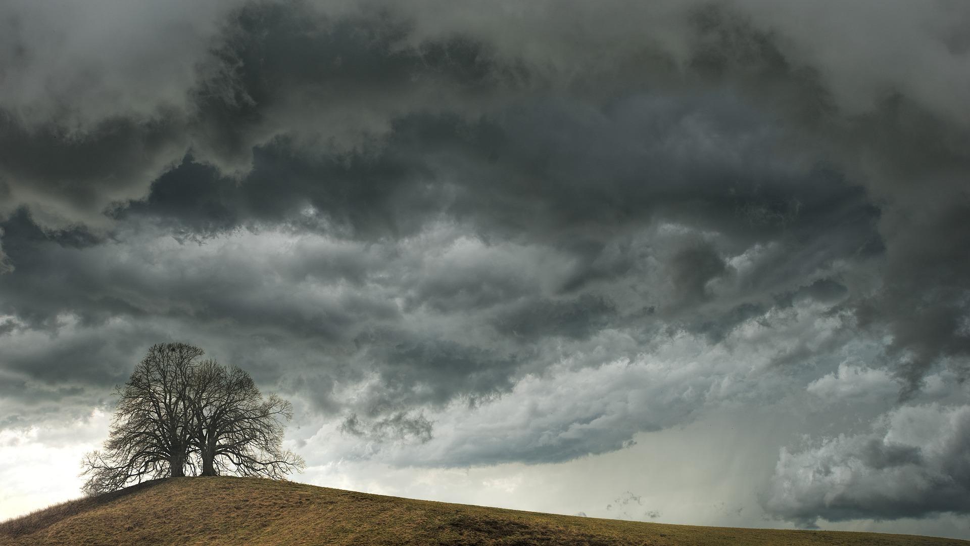 Ein kahler Baum steht auf einem verdorrten Hügel. Am Himmel türmen sich dramatisch dunkle graue Wolken