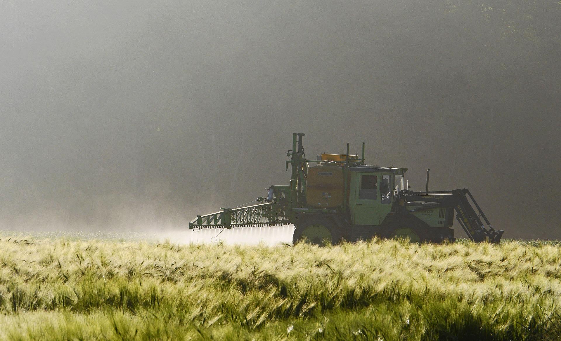 Ein Traktor versprüht Pflanzenschutzmittel auf einem Gerstenacker.