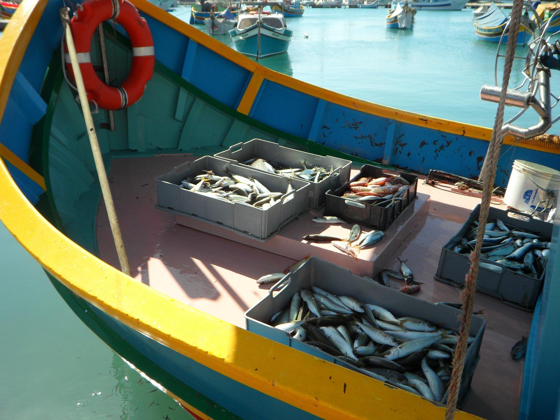 Ein buntes Fischerboot mit verschiedenen gefangenen Fischen in Kisten.