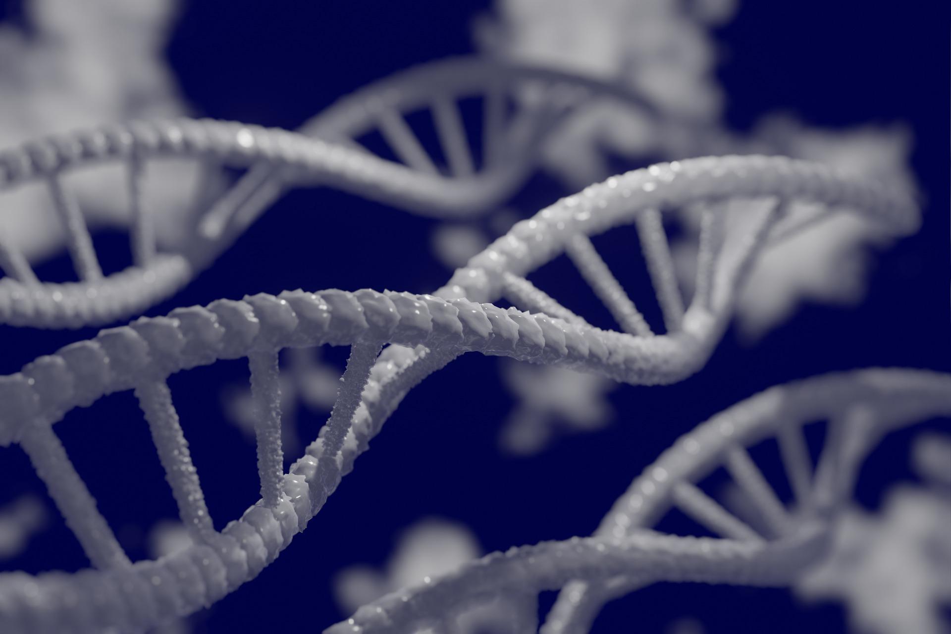 Illustrationen weisser DNA-Stränge vor dunkelblauem Hintergrund.