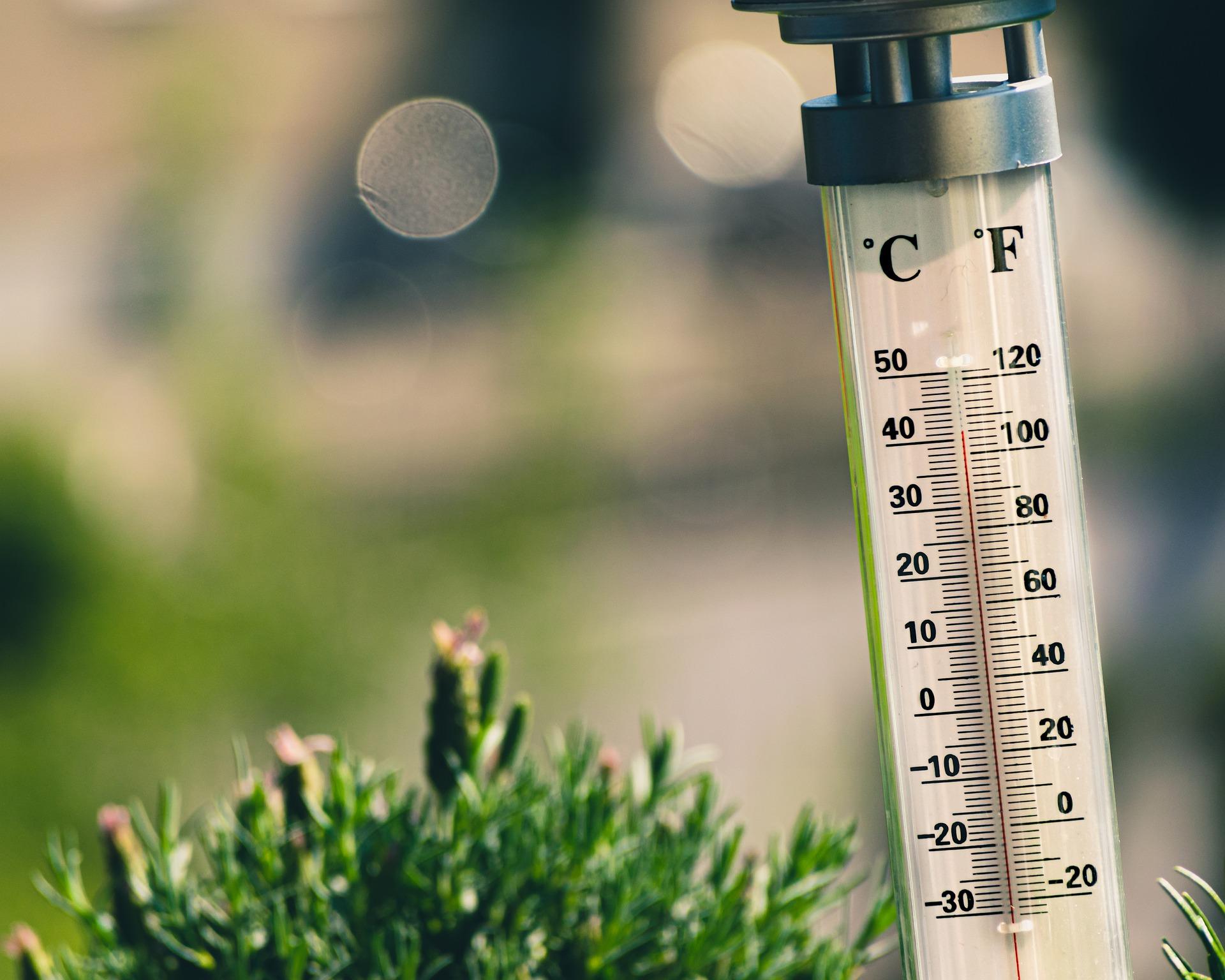 Aussenthermometer, das 41 Grad Celsius anzeigt.