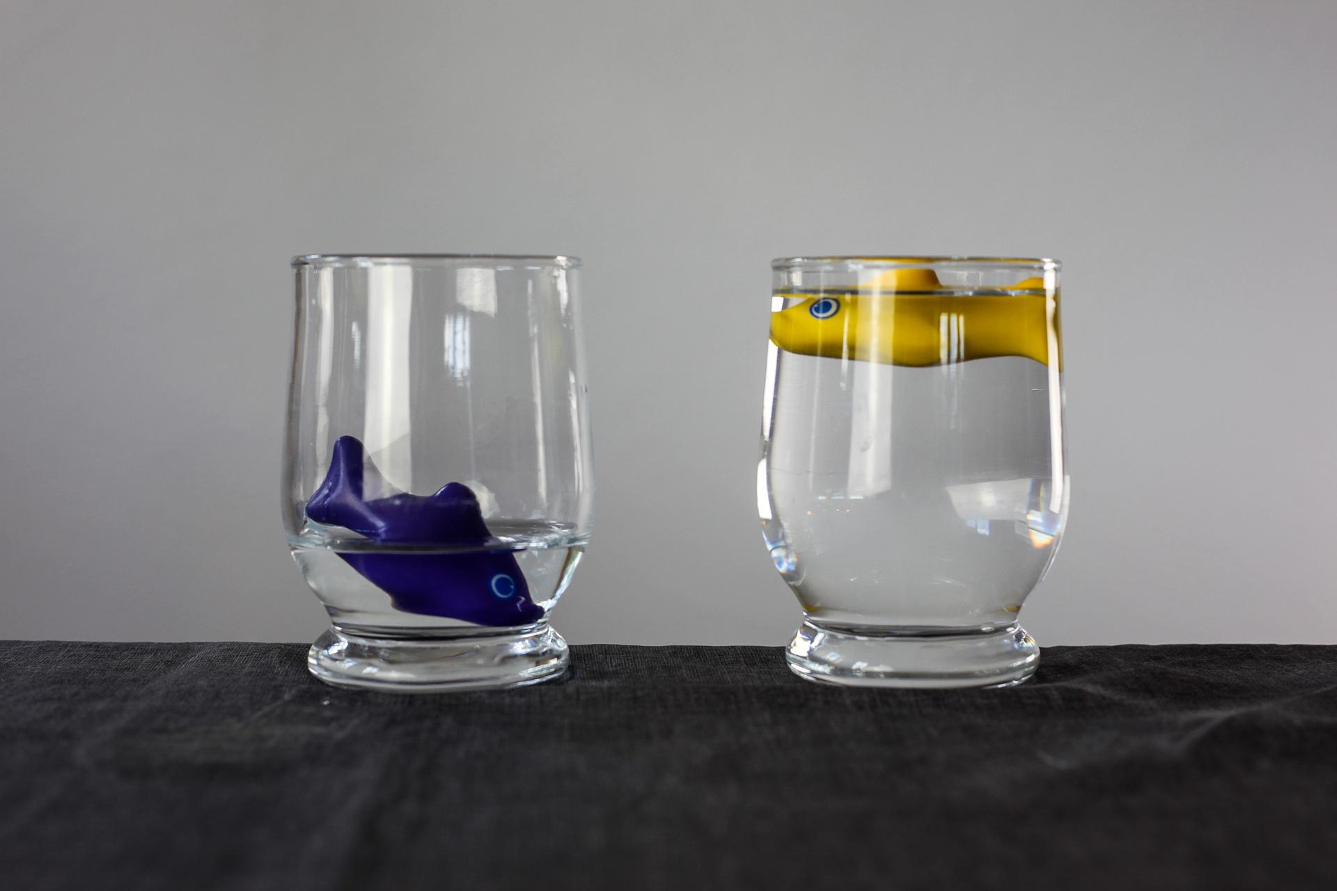 2 Wassergläser mit je einem Plastikfisch drin, das linke Glas fast leer, das rechte Glas ist voll.
