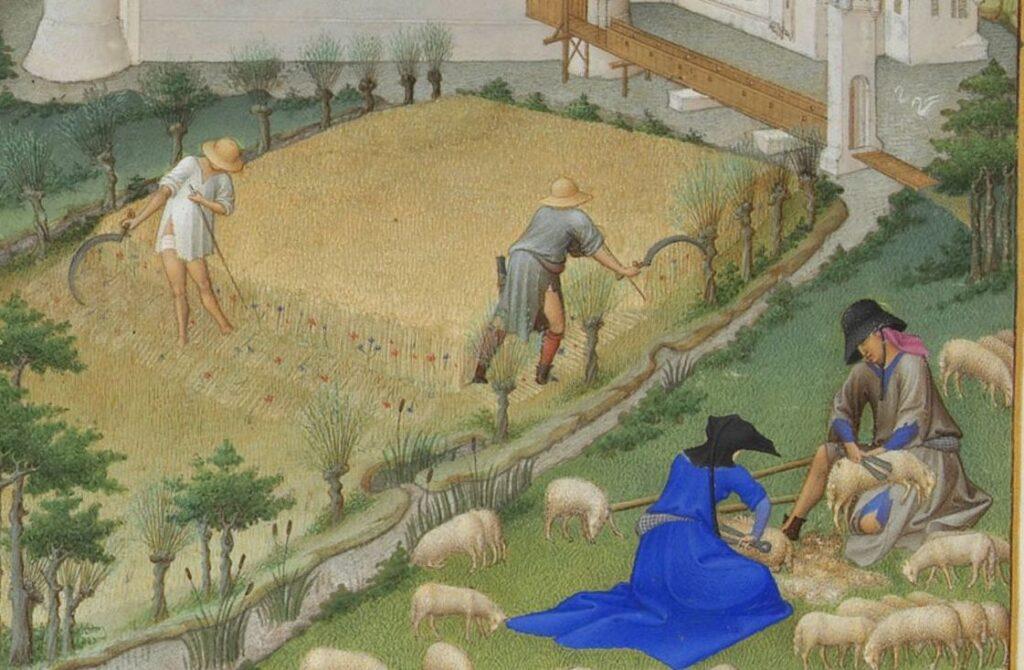 Buchmalerei einer mittelalterlichen Ernte