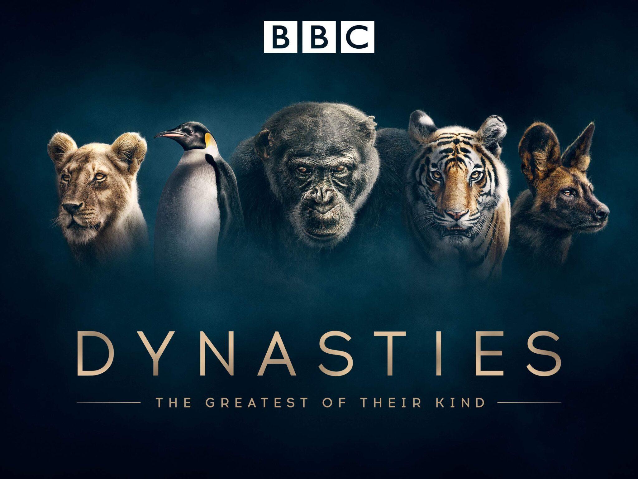 Promotionsbild der BBC Serie Dynasties mit einem Löwen, einem Pinguin, einem Gorilla, einem Tiger und einer Hyäne.