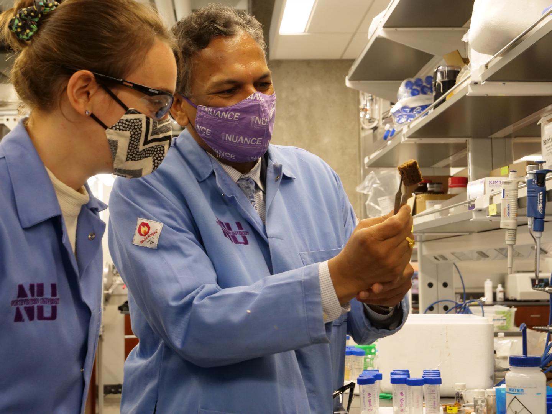 Eine Forscherin und ein Forscher in einem Labor mit dem kleinen Schwamm