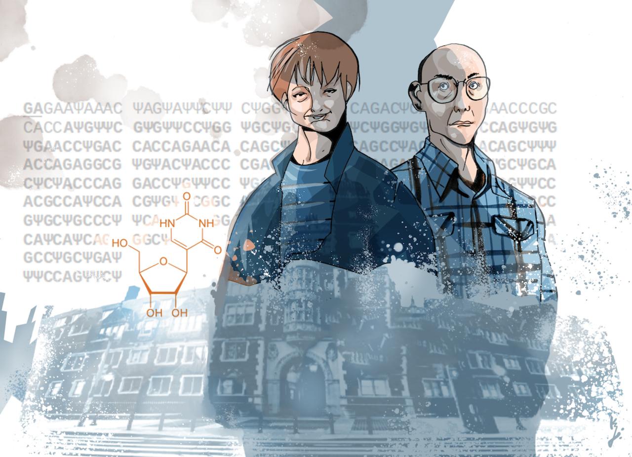 Kariko und Weissman als Illustration