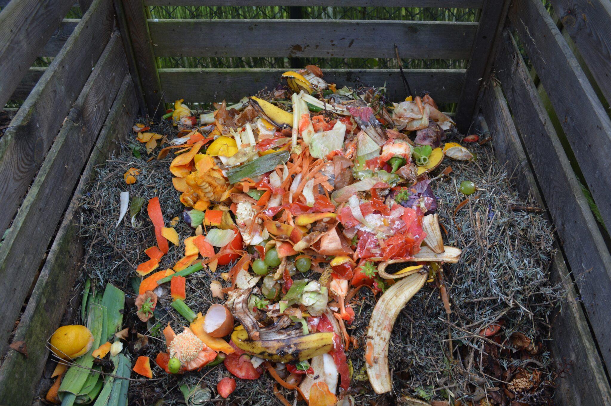 Ein Komposthaufen in einer Holzbox mit bunten Küchenabfällen