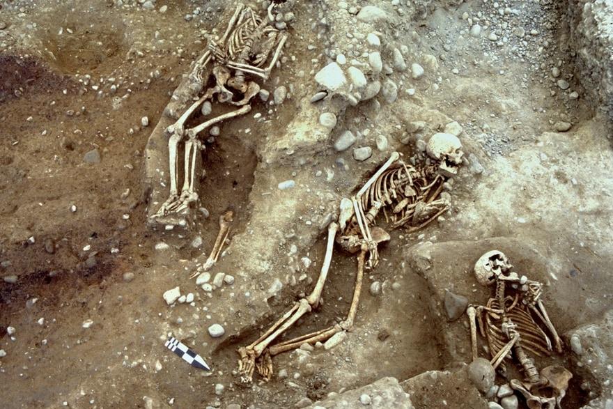Skelette die nebeneinander in der Erde liegen.